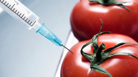Monsanto and teams up with major brands to kill GMO labeling